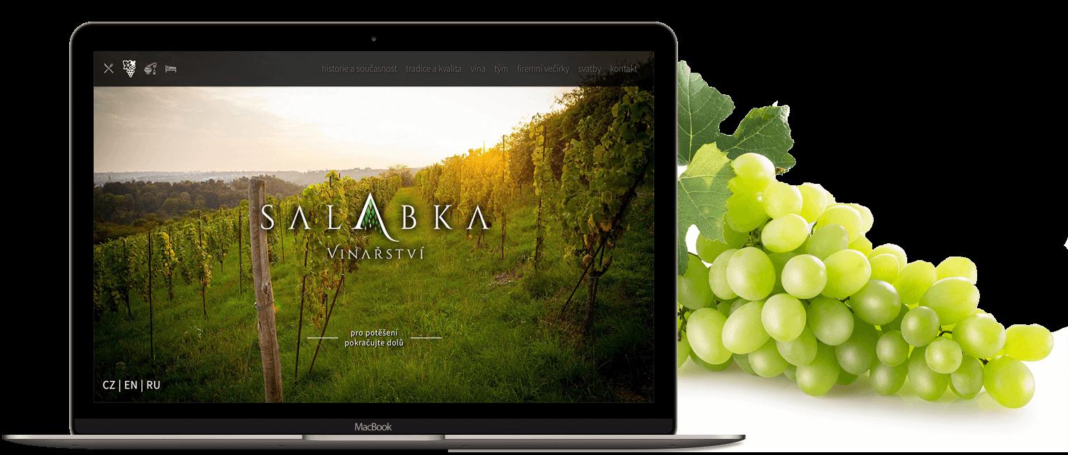 salabka-cover-mockup